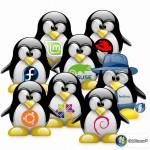 Optimiza Ubuntu para que tu sistema rinda mejor